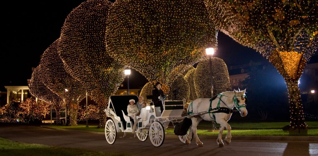 Gaylord Opryland -Carriage